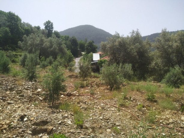 560-m2-new-houseland-for-sale-between-mountains-tepe-alanya-big-8
