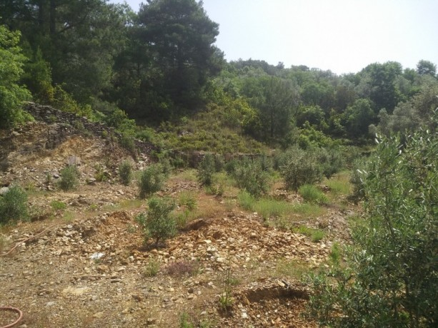 560-m2-new-houseland-for-sale-between-mountains-tepe-alanya-big-18