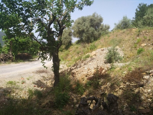 560-m2-new-houseland-for-sale-between-mountains-tepe-alanya-big-3