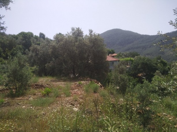 560-m2-new-houseland-for-sale-between-mountains-tepe-alanya-big-19