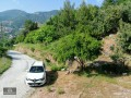 alanya-bektas-uncompleted-house-in-1059-m2-land-for-sale-small-2
