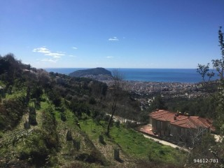 ANTALYA ALANYA BEKTAŞ 1,672 m2 Villa Land For House and Pool Construction