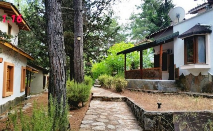 antalya-property-country-villa-for-sale-in-beycik-mountain-big-3