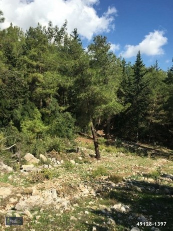 1600-m2-land-for-sale-in-kemer-antalya-big-11