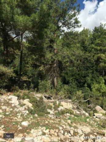 1600-m2-land-for-sale-in-kemer-antalya-big-1