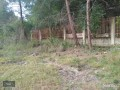 kemer-camyuva-6925-m2-land-for-sale-to-build-dream-house-small-3