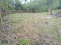 kemer-camyuva-6925-m2-land-for-sale-to-build-dream-house-small-5