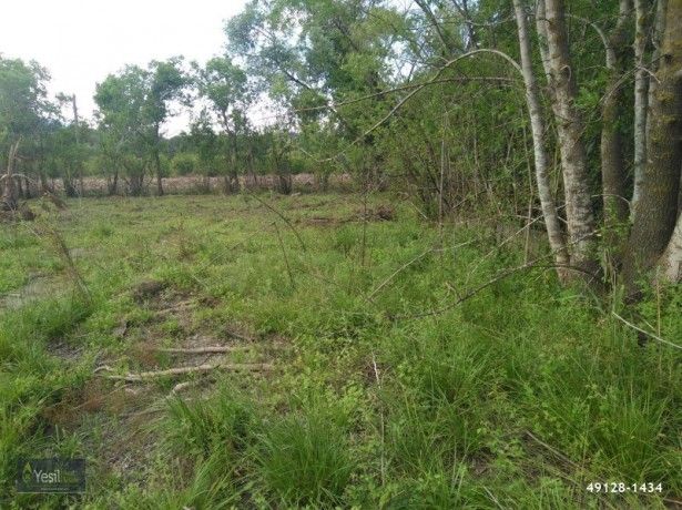 kemer-camyuva-6925-m2-land-for-sale-to-build-dream-house-big-6
