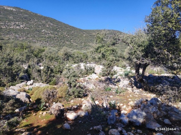 53000-m2-hotel-land-opportunity-for-investment-kas-big-5