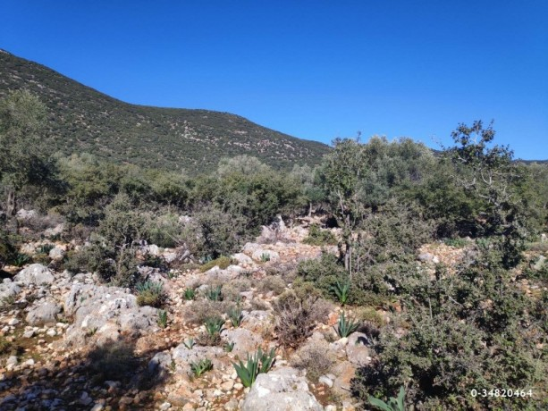 53000-m2-hotel-land-opportunity-for-investment-kas-big-6