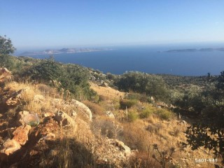 31.738 m2 SEA VIEW LAND FOR SALE SARIBELEN VILLAGE KAŞ