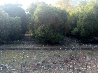 5,200 m2 Land for sale in Kemer, Antalya near the sea