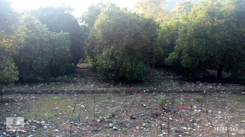 5200-m2-land-for-sale-in-kemer-antalya-near-the-sea-big-0