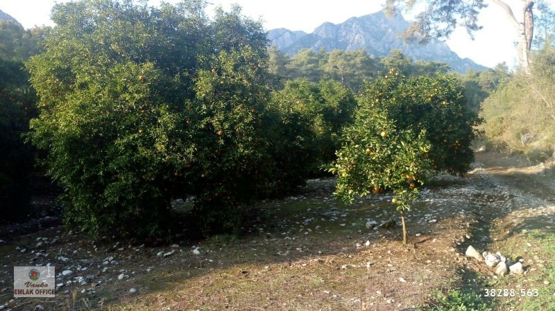 5200-m2-land-for-sale-in-kemer-antalya-near-the-sea-big-2