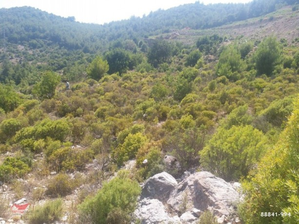 1500-m2-land-for-sale-with-sea-view-between-mountains-in-alanya-big-1