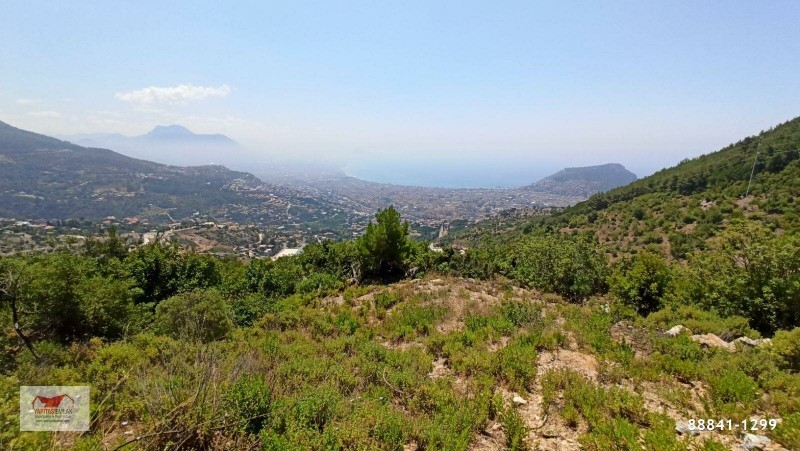 alanya-tepe-sea-view-land-for-sale-1001-m2-villa-zoned-big-3