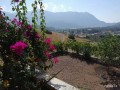 a-house-with-a-magnificent-garden-for-sale-in-the-center-of-antalya-adrasan-small-5