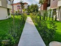 31-garden-on-superlux-site-near-the-center-small-0