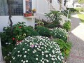 alanya-avsallar-50-meters-from-the-sea-holiday-home-for-sale-small-0