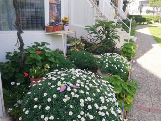 alanya-avsallar-50-meters-from-the-sea-holiday-home-for-sale-big-0