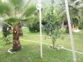 31-apartment-for-rent-with-pool-near-kemer-center-small-9