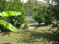 lara-guzeloba-2bedrooms-garden-entrance-with-separate-kitchen-small-3