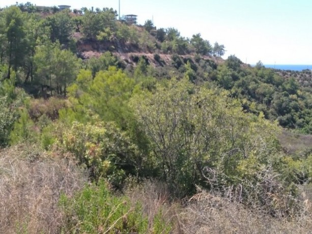 antalya-alanya-demirtas-for-sale-7650m2-land-partial-seaviews-big-5