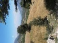 antalya-kumluca-kuzca-7868-m2-rural-inland-village-home-zoned-small-3