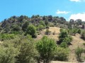 antalya-kumluca-kuzca-7868-m2-rural-inland-village-home-zoned-small-1