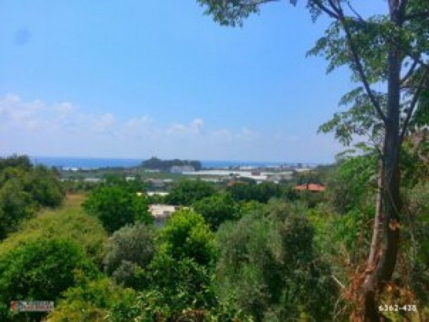 2528-m2-farm-land-for-sale-in-alanya-yesiloz-district-big-3