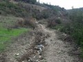 alanya-turktas-has-10000-m2-land-road-for-sale-small-7