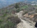alanya-turktas-has-10000-m2-land-road-for-sale-small-0