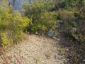 alanya-turktas-has-10000-m2-land-road-for-sale-small-5