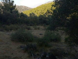 13.300 m2 with MUSTAKIL deed in OLYMPOS Center