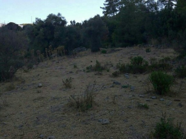 13300-m2-with-mustakil-deed-in-olympos-center-big-5