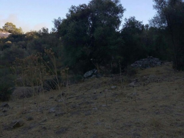 13300-m2-with-mustakil-deed-in-olympos-center-big-4