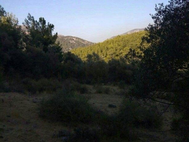 13300-m2-with-mustakil-deed-in-olympos-center-big-1