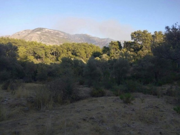 13300-m2-with-mustakil-deed-in-olympos-center-big-3