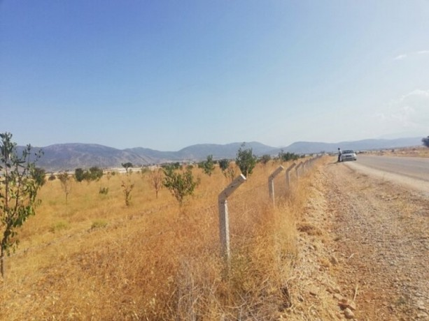 9200-m2-affordable-unmissable-land-75x75-vineyard-house-licensed-big-1