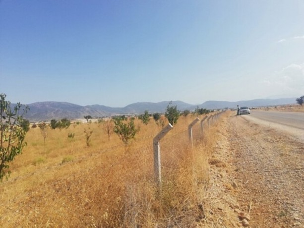 9200-m2-affordable-unmissable-land-75x75-vineyard-house-licensed-big-5
