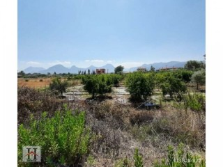 9.000 m2 FIELD FOR SALE IN MANAVGAT