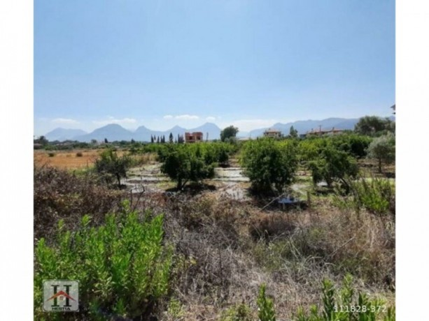 9000-m2-field-for-sale-in-manavgat-big-0