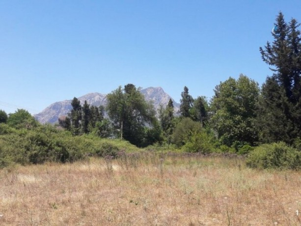 2000-m2-acre-field-for-sale-in-kuzdere-village-home-zoned-big-2