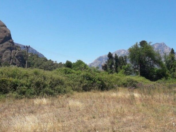 2000-m2-acre-field-for-sale-in-kuzdere-village-home-zoned-big-3