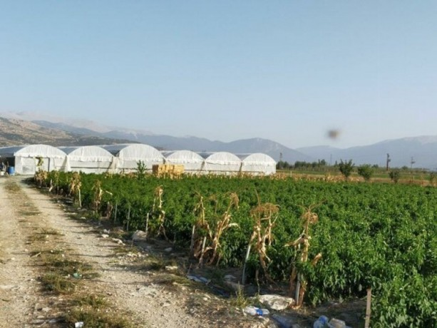 greenhouse-farm-for-sale-in-elmali-duden-village-9075-m2-big-8