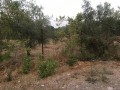 6894-m2-land-for-sale-unmissable-investment-opportunity-small-6