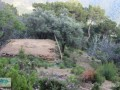 land-and-house-with-sea-view-for-sale-in-alanya-yesiloz-small-6