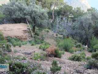 LAND AND HOUSE WITH SEA VIEW FOR SALE IN ALANYA YEŞILÖZ