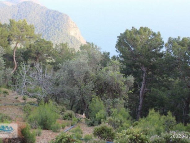land-and-house-with-sea-view-for-sale-in-alanya-yesiloz-big-3