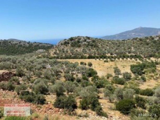 field-for-sale-in-kas-kemer-village-11889-m2-big-7